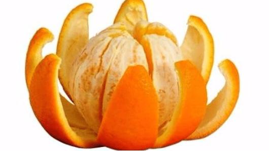 апельсин цветок