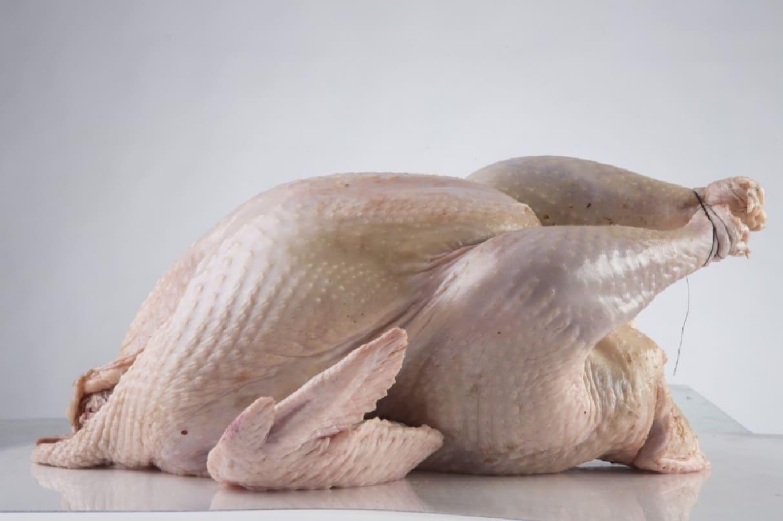 Сколько весят птицы и их яйца