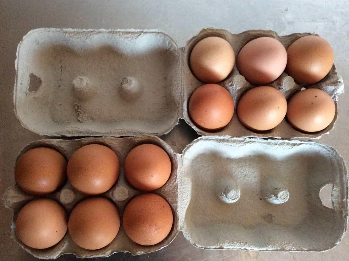 Вес куриных яиц